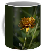 Orange Blanket Flower Coffee Mug