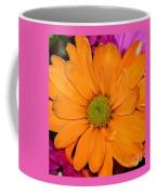Orange Crush Daisy Coffee Mug