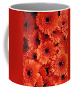Orange Daisies Coffee Mug