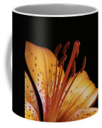 Orange Day Lilly On Black Coffee Mug