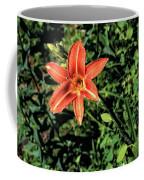 Orange Day Lily 1 Coffee Mug