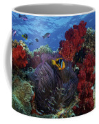 Orange-finned Clownfish And Soft Corals Coffee Mug by Terry Moore