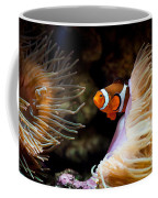 Orange Fish In Sea Anemones Coffee Mug