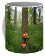 Orange Fungi On A Tree Coffee Mug