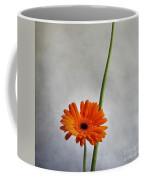 Orange Gernera Coffee Mug