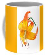 Orange Lily No 3 Coffee Mug