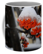 Orange Mountain Ash Berries Coffee Mug