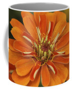 Orange Orange Orange Coffee Mug