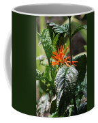 Orange Plants Coffee Mug