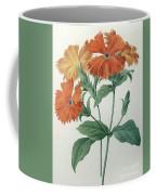 Orange Rose Campion Coffee Mug