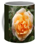Orange Rose Square Coffee Mug