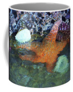 Orange Starfish Coffee Mug
