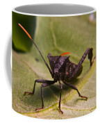 Orange Tipped Antennae Coffee Mug