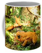 Orange Toad Coffee Mug
