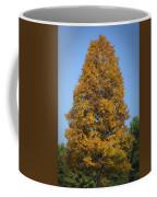 Orange Tree Pipestem Short Course Coffee Mug