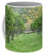 Orange Trees And Sheep Flock Coffee Mug