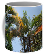 Orange Trees Coffee Mug