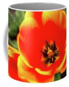 Orange Tulip Flowers In Spring Garden Coffee Mug