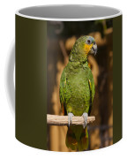 Orange-winged Amazon Parrot Coffee Mug by Adam Romanowicz