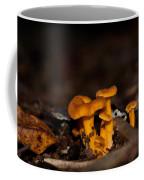 Orange Woodland Mushrooms Coffee Mug