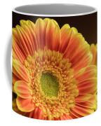 Orange Yellow Gerbera Coffee Mug