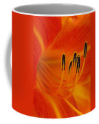 Orange You Glad Coffee Mug
