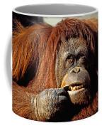 Orangutan  Coffee Mug
