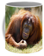 Orangutan In The Grass Coffee Mug by Garry Gay