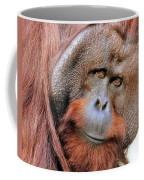 Orangutan Male Closeup Coffee Mug