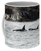 Orcas In The Salish Sea Coffee Mug