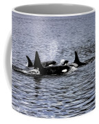 Orcas, The Killer Whales Coffee Mug