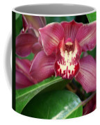 Orchid 10 Coffee Mug