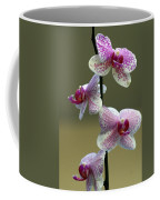 Orchid 16 Coffee Mug