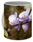 Orchid 18 Coffee Mug