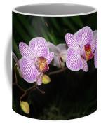 Orchid 2 Coffee Mug