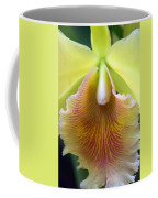 Orchid 21 Coffee Mug