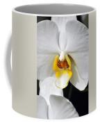 Orchid 23 Coffee Mug
