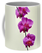 Orchid 26 Coffee Mug