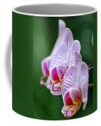 Orchid 30 Coffee Mug