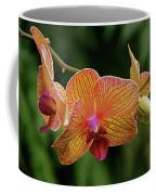Orchid Aliveness Coffee Mug