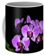 Orchid Blossoms IIi Coffee Mug