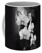 Orchid Cluster Close-up Coffee Mug