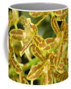 Orchid Drama Canvas Coffee Mug