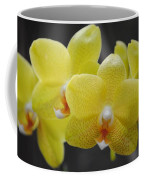 Orchid Family Coffee Mug