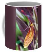 Orchid Flower - Restrepia Radulifera Coffee Mug