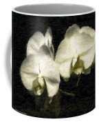 Orchid In White Coffee Mug