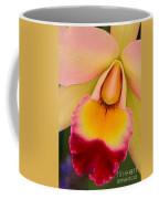 Orchid Painting Coffee Mug