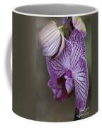 Orchid Strips Coffee Mug