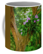 Orchid Tree Coffee Mug