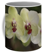 Orchid White Trio Coffee Mug